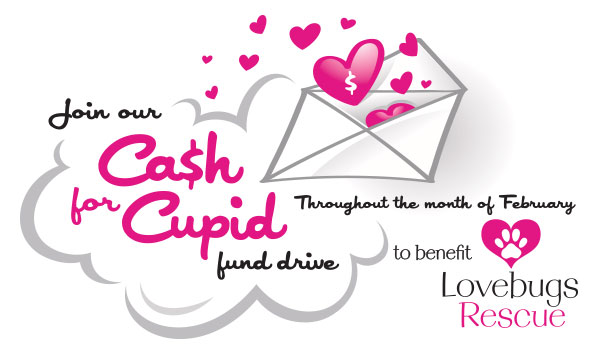 LVBG-015 CashForCupid Final
