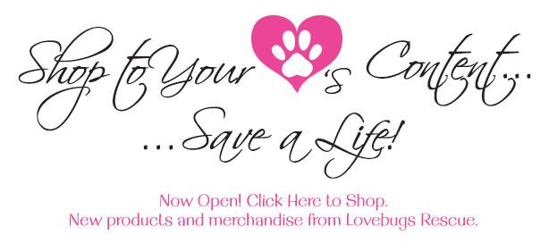 LVBG-023-ShopToYourHeartsContentHeader